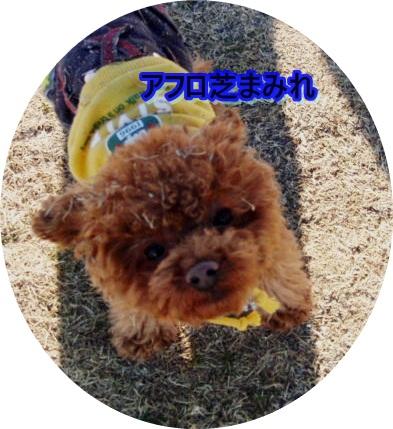045_20110119.jpg