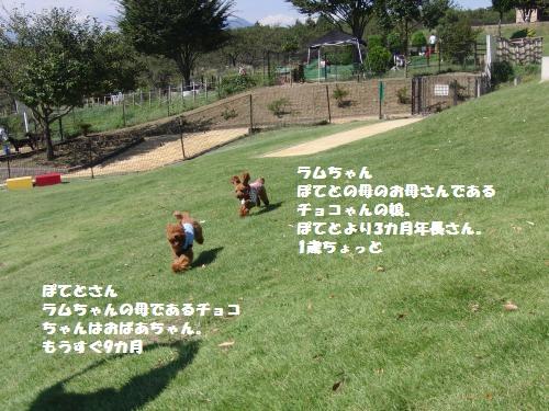 047_convert_20100927161302.jpg