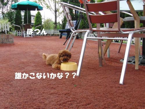 121_convert_20100816220551.jpg