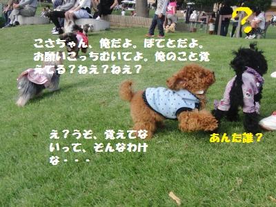 1253_convert_20100927161832.jpg