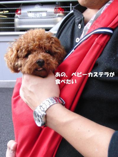 161_convert_20100807210051.jpg
