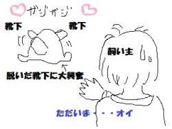 繧、繝ゥ繧ケ繝茨シ胆convert_20101014142544