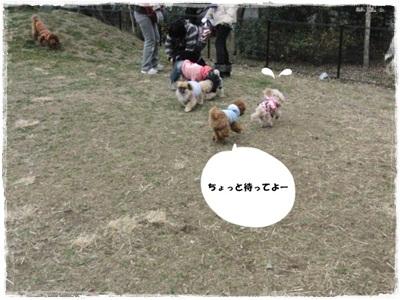 20110131-CIMG8165.jpg