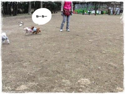 20110131-CIMG8229.jpg