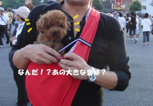 318_convert_20100807210311.jpg