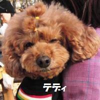 CIMG1382_convert_20101201160615.jpg