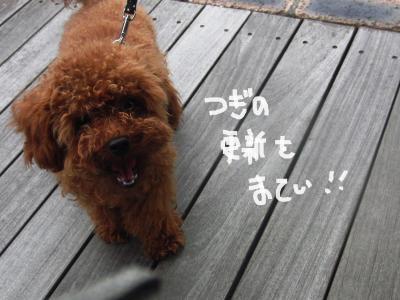 CIMG5977_convert_20100711220456.jpg