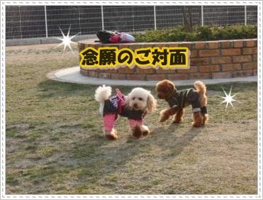 CIMG6036_20110123.jpg
