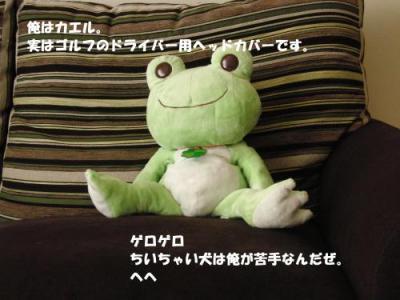 CIMG9176_convert_20100813224252_convert_20100903092317.jpg