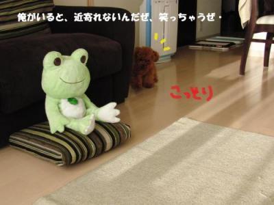 CIMG9185_convert_20100813224317_convert_20100903092428.jpg