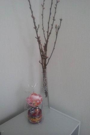桃の花とお雛様