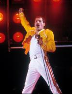 Freddie_20110324102318.jpg