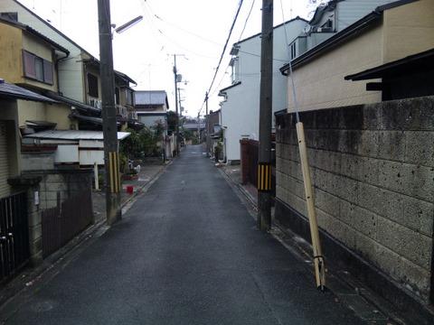 SH3E0013_20101218184636.jpg