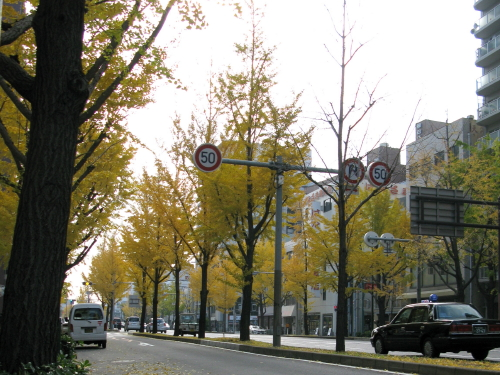 yotsubashi_20131204.jpg