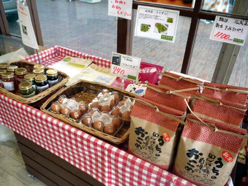 横濱 花菜屋