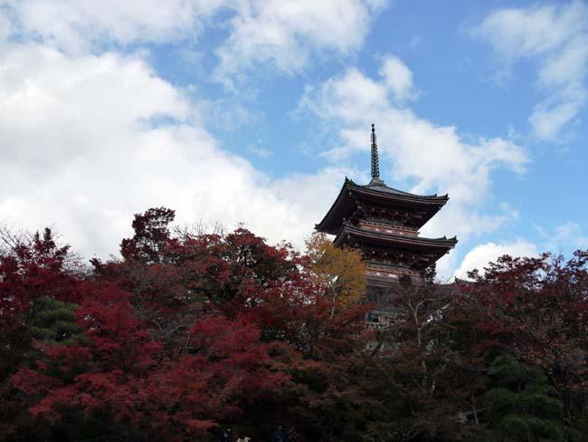 京都紅葉狩り