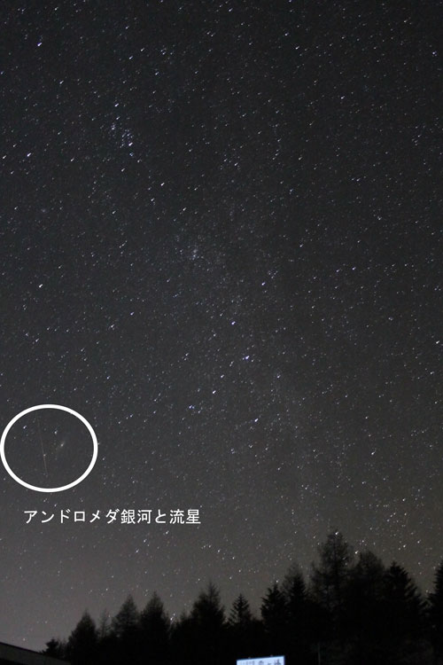 IMG_85752.jpg