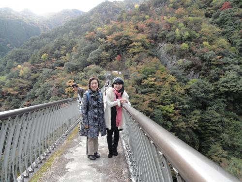 梅の木吊り橋