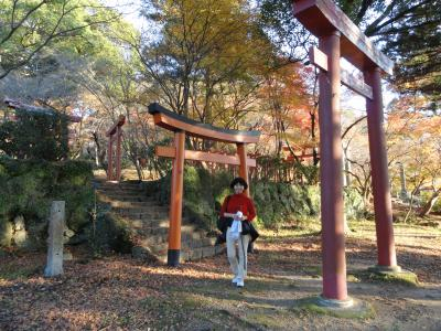 竃戸神社の紅葉