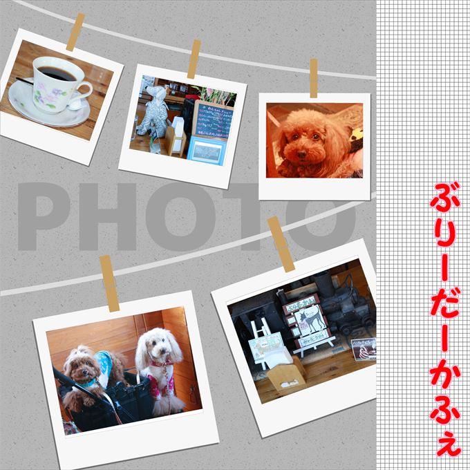 52_201402011737519a6.jpg