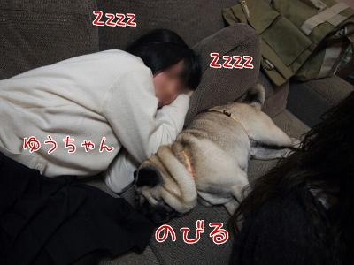 20121226172633 (400x300)