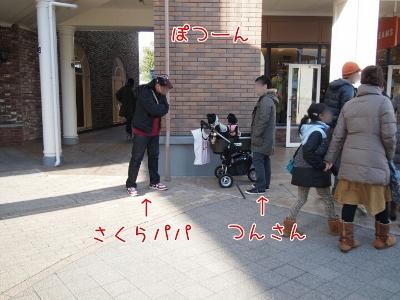 201319122453 (400x300)