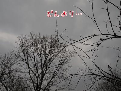 201322133257 (400x300)