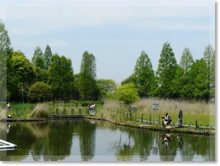 湿地公園2