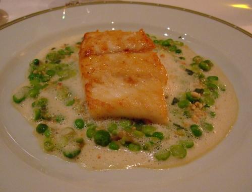ルサンク魚ブログ2