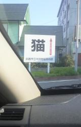 awaji3.jpg