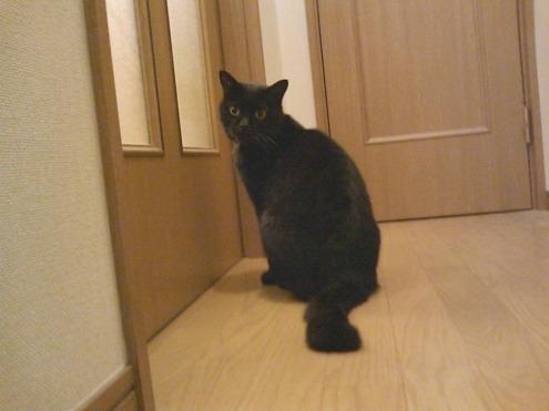 17)ドアの前