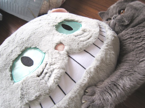 7)お顔の大きいもの同士!