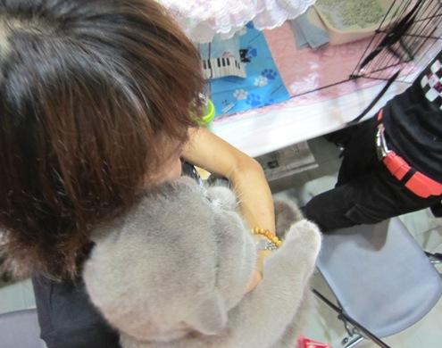 12)横浜のおかーさんと。まるたん頭デカイ