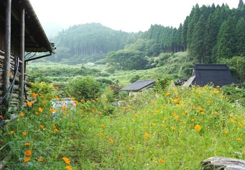 6)これも京都市内?