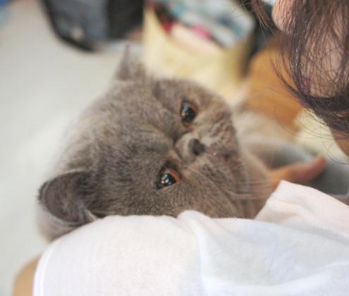 6)抱っこされるマル