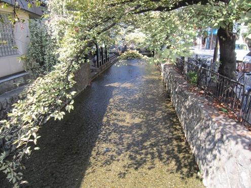 10.5)高瀬川