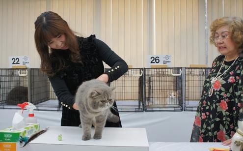 13)薮本トレーニーとぷく審査