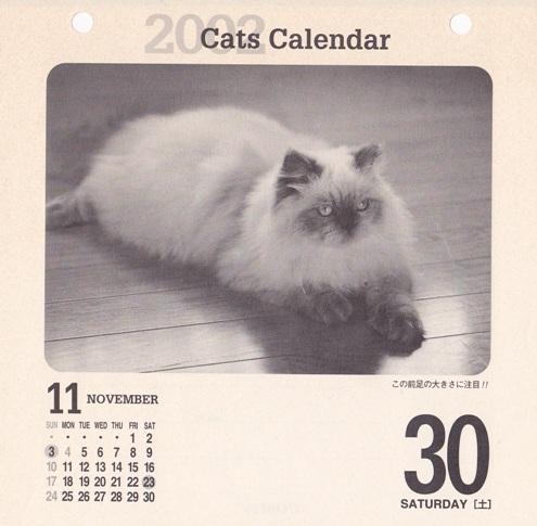 8)2002猫めくり