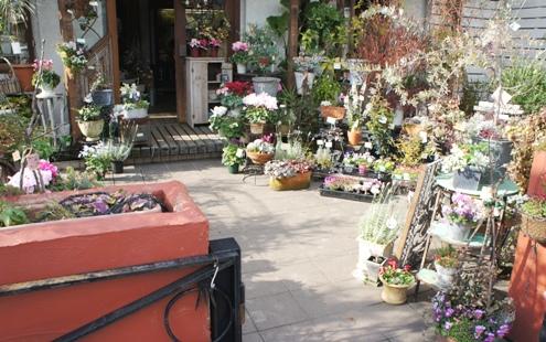 1)お花を買います
