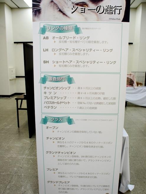 5)ショーの進行
