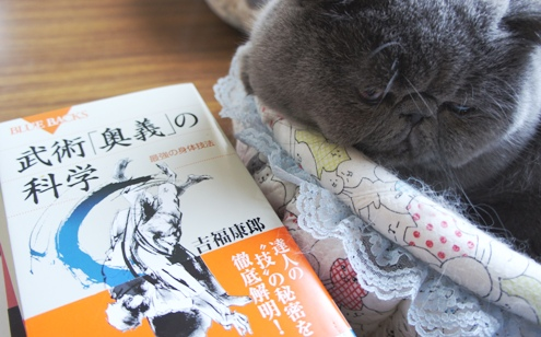 4.2)漢字からお勉強しなくちゃでずよ(やっぱりここに戻る。。。