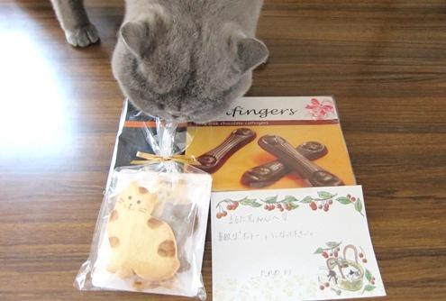 4)たれめちゃんからのチョコレート