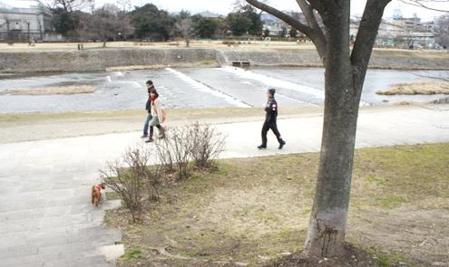 27)鴨川をお散歩
