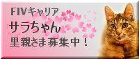 20101226223159a9eサラちゃん