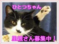 HITOTU1.jpg