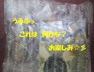2011110320450001.jpg