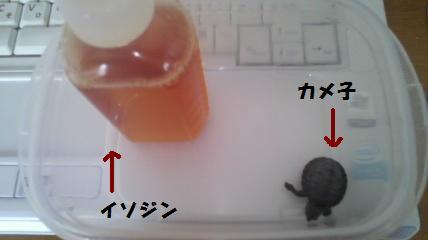 2012063011200000.jpg