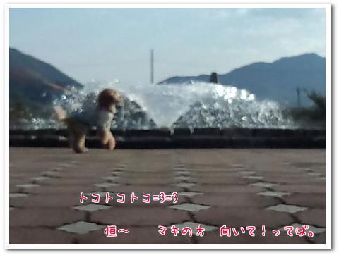 IMG_20121103_151315B.jpg