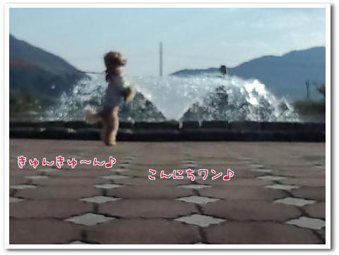 IMG_20121103_151318BB.jpg