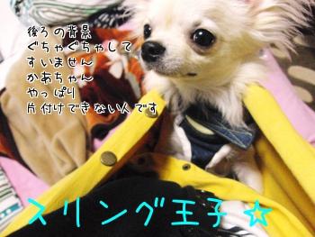 11_20100703214858.jpg